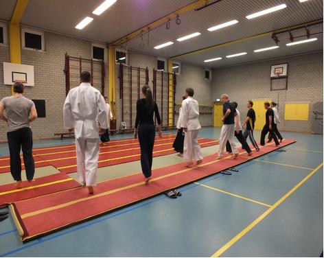 Aikido Haarlem introductiecursus